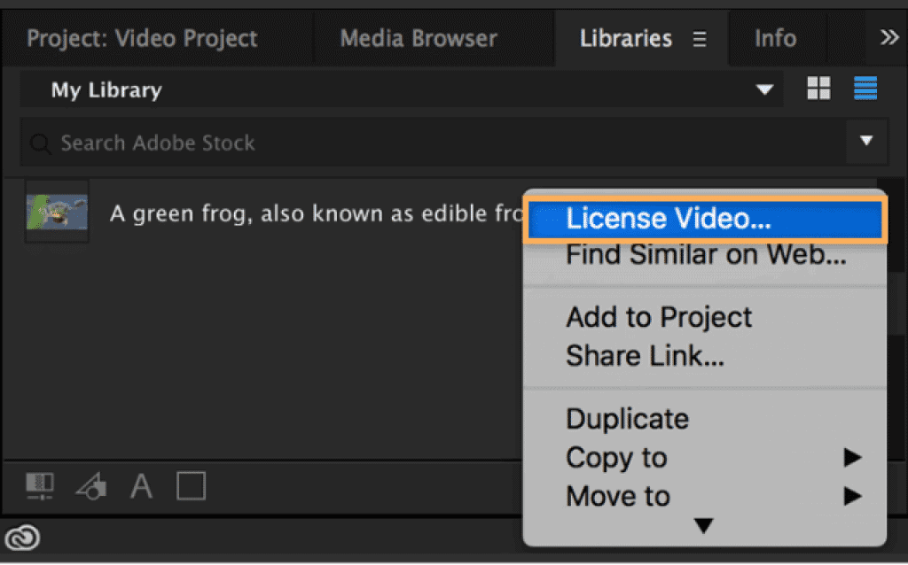 Adobe Stock Footage in Creative Cloud Screenshot showing licensing process