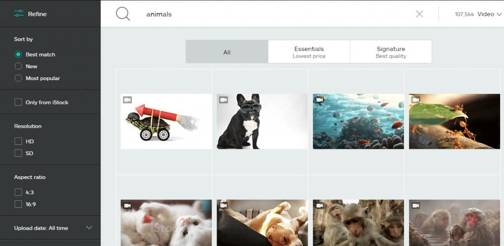 iStock Search and FIlters in Action