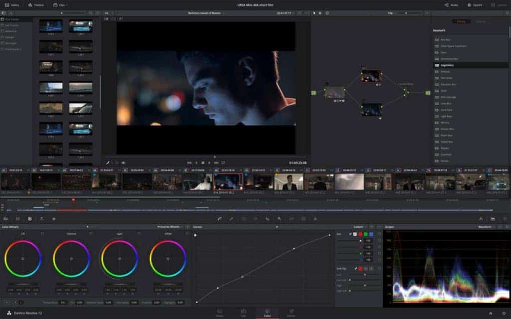 DaVinci Resolve Screenshot